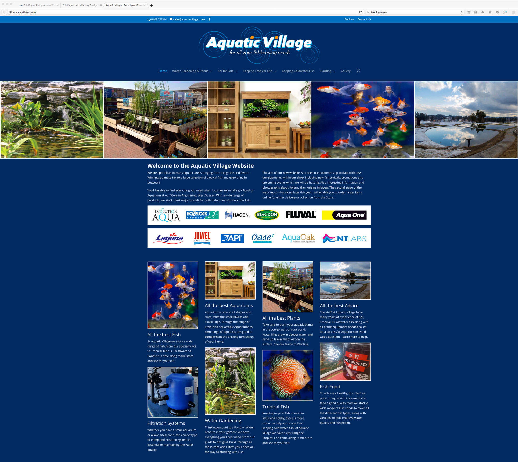 Aquatic Village Website Design