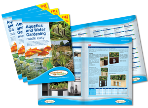 Aquatics & Water Gardening Brochure Design 2008